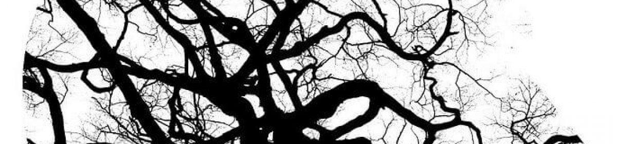 Psygoloog – Psycholoog – Psychologie